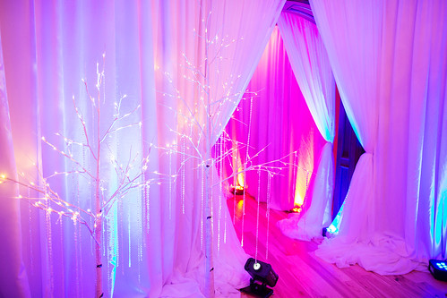 """Fire and Ice Party • <a style=""""font-size:0.8em;"""" href=""""http://www.flickr.com/photos/81396050@N06/46741544674/"""" target=""""_blank"""">View on Flickr</a>"""