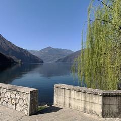 (Paolo Cozzarizza) Tags: italia lombardia brescia pisogne panorama acqua riflesso alberi muro