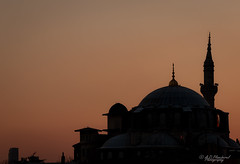Silhouetted (Through_Urizen) Tags: aksarayguesthouse architecture category cerrahmehmetpasacami external istanbul panorama places sunset turkey canon70d tamron70200g2 canon dome mosque camii placeofworship building structure travelphotography silhouette shadow glow sky bird shapes architecturephotography