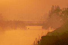 the mists of time (Ham L. Hadidi) Tags: water bridge sunrise nature bird mist river