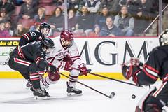 UMass Hockey vs. Northeastern 1-75 (dailycollegian) Tags: umass hockey ice college sports mullins center minutemen northeastern win east jake gaudet carolineoconnor