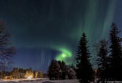 Z19_0085 LT (Zoran Babich) Tags: finland suomi lapland lappi auroraborealis northernlights landcape winter lainio