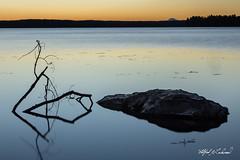 China Lake Serenity_27A7170 (Alfred J. Lockwood Photography) Tags: alfredjlockwood nature serene chinalake water twilight morning sunrise reflection rock autumn vassalboro maine twig branch
