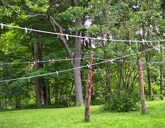 New England Country Clothes Dryer (carlakelly1) Tags: clothesline clothespins trees yard grass dryer country lawn