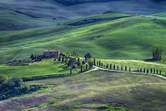 Val d'Orcia - Pienza ( Siena ) (Eugenio GV Costa) Tags: approvato campagna toscana countryside campo outside cielo nuvole sky cloud alberi tree