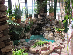 Gillette Castle Wishing Well (Coyoty) Tags: gillettecastle gillettecastlestatepark easthaddam connecticut ct statepark park castle conservatory wishingwell building architecture plants flora green brown windows pool attraction aloe spiderplants potted pottedplants stone sun money sunlight newengland garden