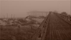 A foggy day in Heiligenhafen on the Baltic Sea (Ostseetroll) Tags: deu deutschland geo:lat=5438086756 geo:lon=1097873821 geotagged ostseeküste heiligenhafen schleswigholstein nebel ostsee fog balticsea seebrücke pier olympus em5markii