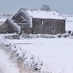 Cold-Barn thumbnail