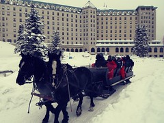 Lake Louise Chateau Fairmount (Mr. Happy Face - Peace :)) Tags: art2019 horses ponies snow hotel banff albertabound seigh ride strangers love flickrfriends weather deepfreeze blackbeauty