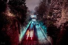 Clifton Down Station, Bristol, UK (KSAG Photography) Tags: train railway bridge station bristol england uk unitedkingdom europe transport publictransport night nightphotography city urban 35mm nikon hdr february 2019 winter