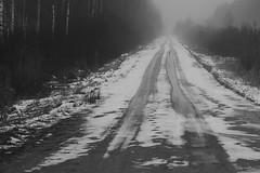 the lost road (Mindaugas Buivydas) Tags: lietuva lithuania bw winter december favoriteplaces road path fog mist delta nemunasdelta nemunasdeltaregionalpark nemunodeltosregioninisparkas aukštumala sadnature mindaugasbuivydas