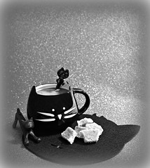2019 Sydney: Black Cat Coffee (dominotic) Tags: 2019 coffee blackandwhite coffeeobsession blackcatcoffeecup catspoon catpen catmat apricotbites food confectionery drink foodphotography bw yᑌᗰᗰy sydney australia