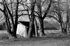 Vieux lavoir de Montreuil - Eure-et-Loir (Philippe_28) Tags: 28 montreuil eureetloir eure rivière river nature 24x36 argentique analogue camera photography film 135 lavoir
