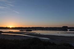 IMG_3480 Sunset, Mallorca (Fernando Sa Rapita) Tags: baleares canon canoneos coloniadesanjordi eos6d essalobrar estrenc mallorca parquenatural sessalines sessalinesdeestrenc sigma sigma35mm sigmaart sigmalens atardecer cielo puestadesol sky sol sun sunset