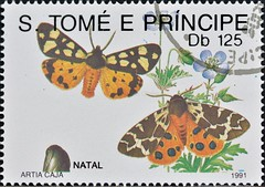 Sao Tome And Principe (19) 1991 Christmas - Butterflies (DC Stamps) Tags: sao tome principe stamps stampcollectors ©deckokiwiclarke ©deckoclarke stampclub explore spacestamps mintstamps usedstamps miniaturesheets souvenirsheet postagestamps worldstamps stamp space philately international astronomical orbit