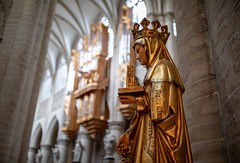 St. Michael and St. Gudula Cathedral (Cathedrale St-Michel et Ste-Gudule (jussitoivanen) Tags: architecture architectur catholicalcathedral cathedral interiordesign history canon