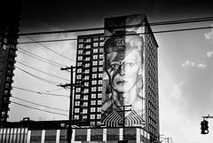 DBowie3-040-18A (David Swift Photography) Tags: davidswiftphotography newjersey jerseycity murals publicart davidbowiemural eduardokobra 35mm ilfordxp2 olympusstylusepic