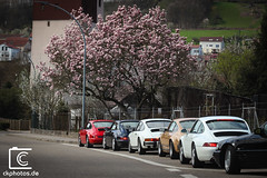 Porsche 911 luftgekühlt Spring drive (Christian Keller - www.ckphotos.de) Tags: luftgekühlt luftgekuhlt aircooled 964 gmodel carerra 911 911legendsneverdie 911lineup spring carsandcoffee sundaydrive drive keeplegendsalive rennstreckenklassiker rennsport rennwagen redcar 993 tree colors canon car canonphotography carphotography carspotting cars canon7dmkii carporn carjournalism carspotter carstagram porsche porsche911 porscheclassic classic vintage classiccar flatsix