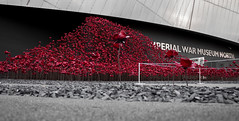 Such a Iconic Flower (MrWhippy99UK) Tags: manchester media city salford quay poppy flower flowers building imperial war museum structure memorial iconic icon respect soldier world 1 2 spring 1915 colonel lieutenant battlefield first remember remembrance sunday photo photography art amateur canon 1300d efs