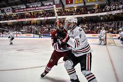 Hockey at Northeastern (dailycollegian) Tags: umass university massachusetts amherst hockey sports ice winter northeastern bobby trivigno