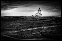 Les poulains (tête de noeud) Tags: belleileenmer blackandwhite bw lighthouse photoshop beach bretagne nik