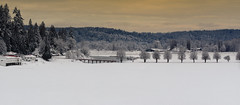 Carnation Farms, Carnation, WA (bcdixit) Tags: nikond750 washingtonstate carnation carnationfarms snow