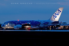 ANA_A380_JA381A_20190212_XFW-4 (Dirk Grothe | Aviation Photography) Tags: ana all nippon airways a380 ja381a turtle xfw