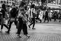 Trying A Little Too Hard To Make Friends (burnt dirt) Tags: asian japan tokyo shibuya station streetphotography documentary candid portrait fujifilm xt1 bw blackandwhite laugh smile cute sexy latina young girl woman japanese korean thai dress skirt shorts jeans jacket leather pants boots heels stilettos bra stockings tights yogapants leggings couple lovers friends longhair shorthair ponytail cellphone glasses sunglasses blonde brunette redhead tattoo model train bus busstation metro city town downtown sidewalk pretty beautiful selfie fashion pregnant sweater people person costume cosplay boobs