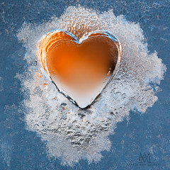 Happy Valentine's Day! (marianna armata) Tags: p1670585 valentines happy day frozen frost heart macro winter cold hot blue red mariannaarmata