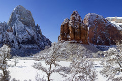Zion National Park in the Snow (swissuki) Tags: zion national nature park mountain sky snow greatwhitethrone angelslanding usa ut utah