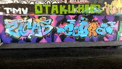 Mssls - Sicaz-Cobra (oerendhard1) Tags: graffiti streetart urban art rotterdam oerendhard maassluis sicaz cobra
