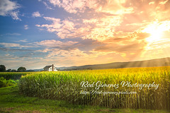 Vibrant Sunset Colors (Rod Gimenez Photography) Tags: agriculture background beautiful blue concept cornfield countryside day design europe farm farmland field grass green hill inspirational land landscape life meadow message nature outdoor rural scenery sign sky spring summer sun sunrays sunraysclouds sunrayssky sunny sunrise sunset symbol text tree typography vintage wallpaper white word