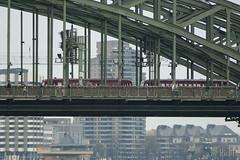 Train Train (RickB500) Tags: train eisenbahn köln cologne bridge db schienenbus railcar trainset
