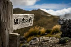 To The Summit (Lyndon (NZ)) Tags: masterton tararua mountain holdsworth wairarapa newzealand nature nz 2019 ilce7m2 sony sign trail hiking