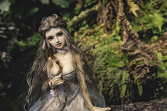a young maiden as modest as she is beautiful (Sugar Lokifer) Tags: oasisdoll bjd ball jointed doll resin sqlab hybrid
