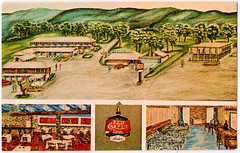 Bluefield, West Virginia - Red Carpet Inn in 1971 (pepandtim) Tags: postcard old early nostalgia nostalgic bluefield west virginia red carpet inn 1971 colorcraft studios powell street farmingdale new york artwork brier restaurant color tv telephone 56blu78