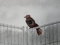 The Big Crow is whatching you / O Grande Corvo zela por ti (-Davi-) Tags: corvo crow draw desenho pencil paper papel bw 1984 george orwell