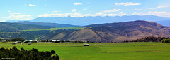 View from Hwy 347, Black Canyon of the Gunnison National Park to San Juan Mountains, Montrose, Colorado, USA (Black Diamond Images) Tags: hwy347 blackcanyonofthegunnisonnationalpark montrose colorado usa westernusatrip2018 2018 canond60 sigma1770 1770 landscapes landscape panorama msice msicepanorama microsofticepanorama mountains sanjuanmountains sanjuannationalforest