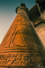 Point of view (tomaszbaranowski007) Tags: d5500 nikond5500 sigma1020 ancient pov africa egypt