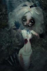 Ethelsia - MH repaint (Loony-Doll) Tags: mh monster high monsterhigh repaint fc custom custo doll dolls mermaid sirena von boo sirenavonboo matel everafterhigh vladaksis vlad aksis makeup wig alpaga reroot