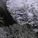Dark Water Ice