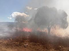 ProtecciónCivil y policía municipal de Tlaxiaco en coordinación con la brigada de CONAFOR trabajaron para sofocar incendio forestal en el paraje Palo Santo, Tlaxiaco.