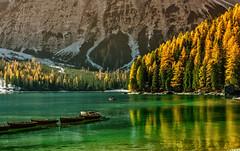 Lago dolomitico (giannipiras555) Tags: dolomiti lago montagna verde alberi natura colori riflessi barche landscape panorama paesaggio