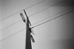 Power lines pole (Matthew Paul Argall) Tags: hanimex35es fixedfocus focusfree blackandwhite blackandwhitefilm kentmerepan100 100isofilm powerlines powerlinespole