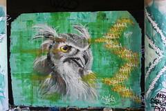 Naoh_5763 boulevard du Général Jean Simon Paris 13 (meuh1246) Tags: streetart paris boulevarddugénéraljeansimon paris13 animaux oiseau naoh chouette hibou
