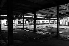Past Prime (thetrick113) Tags: denningspoint newyorkstate newyorkstateparks building rundown abandoned blackandwhite beaconnewyork dutchesscountynewyork hudsonvalley hudsonrivervalley hudsonhighlands sonyslta65v light vacant