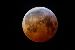Blood Moon, Monday 21st January 2019 (Mister Electron) Tags: bloodmoon lunareclipse astronomical astronomy eclipse lunar moon phenomenon red penumbrallunareclipse