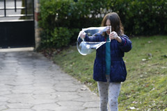 _DSC0549_DxO (Alexandre Dolique) Tags: d850 nikon etampes éloïse bulles de savon