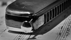 Macro Mondays - Holes (minelflojor) Tags: macromondays holes harmonica musique note gamme portée clefdesol macro bokeh hohner chrometta 14 music range cleffloor tamronsp90mmf28dimacro11vcusd blackandwhite paper papier noiretblanc reflet reflection