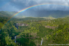_DSF2734-Edit (Laurie2123) Tags: hawaii honeymoon laurieabbotthartphotography laurieturnerphotography laurietakespics odc odc2019 ourdailychallenge kauai helicopter rainbow waterfalls m maunaloahelicoper